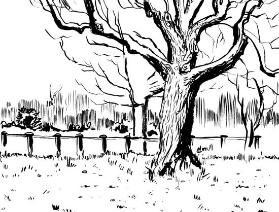 Park-sketch-3.1.12